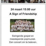 24 maart Zondagmiddag concert Silvolde